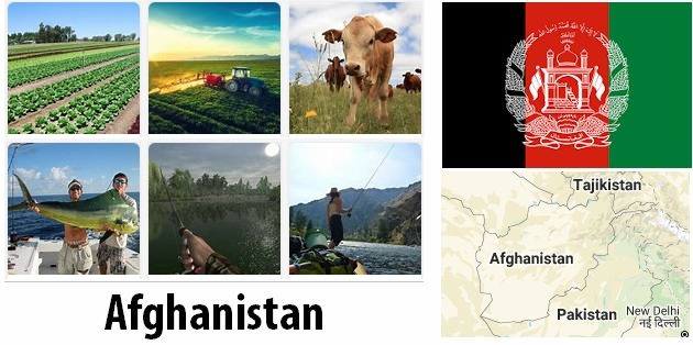 Agriculture and fishing of Afghanistan