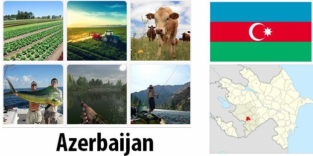 Agriculture and fishing of Azerbaijan