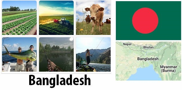 Agriculture and fishing of Bangladesh