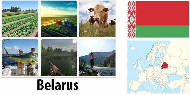 Agriculture and fishing of Belarus