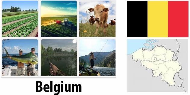 Agriculture and fishing of Belgium