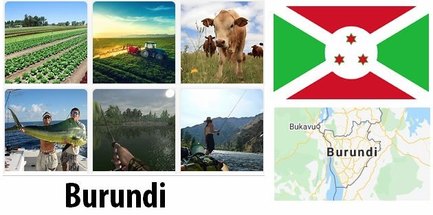 Agriculture and fishing of Burundi
