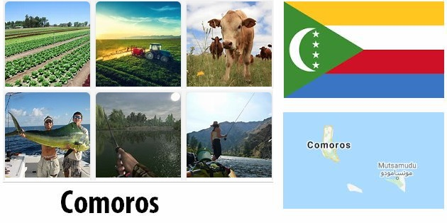 Agriculture and fishing of Comoros