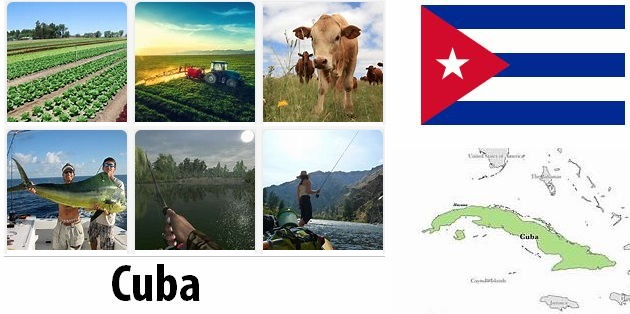 Agriculture and fishing of Cuba