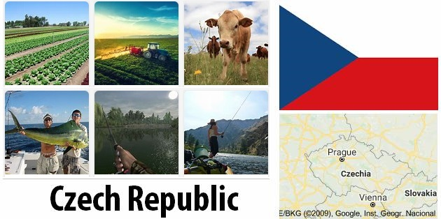 Agriculture and fishing of Czech Republic
