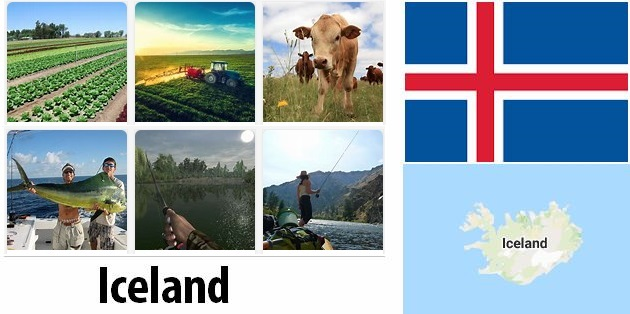 Agriculture and fishing of Iceland