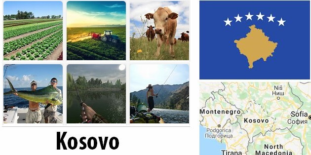 Agriculture and fishing of Kosovo
