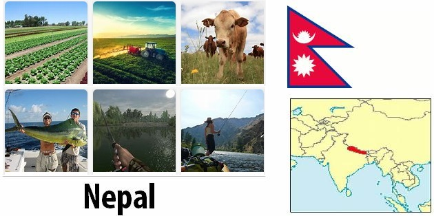 Agriculture and fishing of Nepal