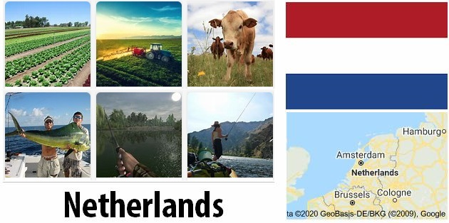 Agriculture and fishing of Netherlands
