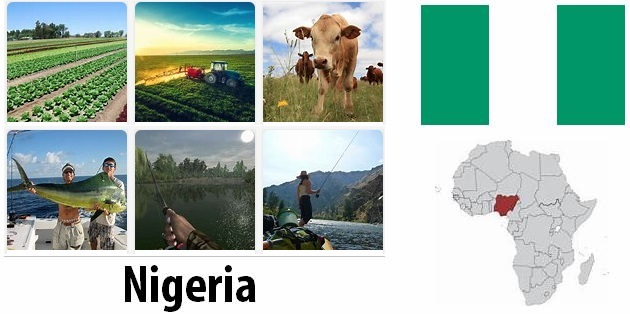 Agriculture and fishing of Nigeria