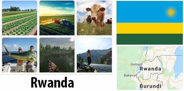 Agriculture and fishing of Rwanda