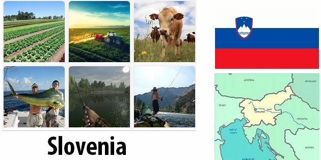 Agriculture and fishing of Slovenia