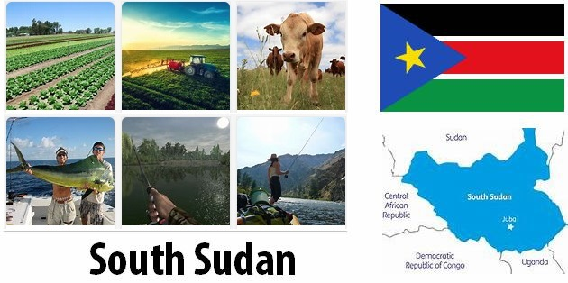 Agriculture and fishing of South Sudan