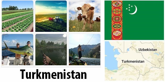 Agriculture and fishing of Turkmenistan