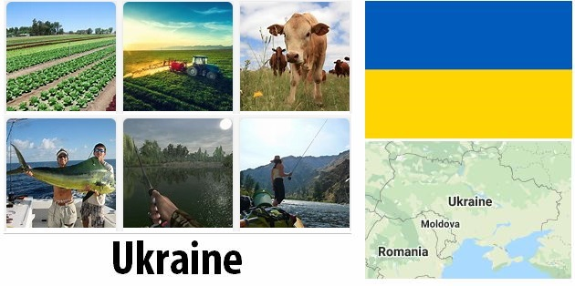 Agriculture and fishing of Ukraine