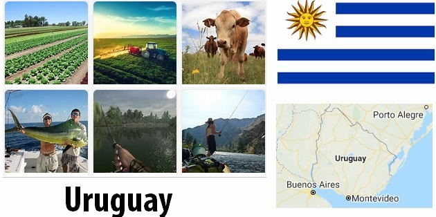 Agriculture and fishing of Uruguay
