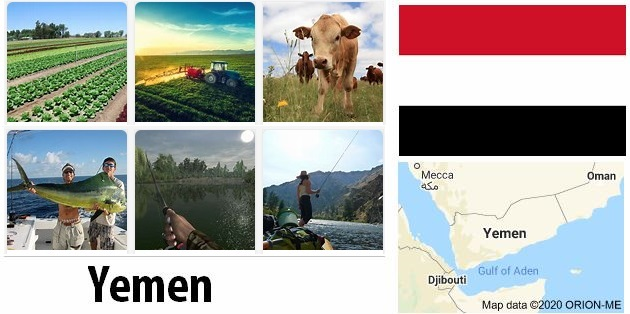 Agriculture and fishing of Yemen