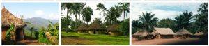Republic of the Congo Travel Guide